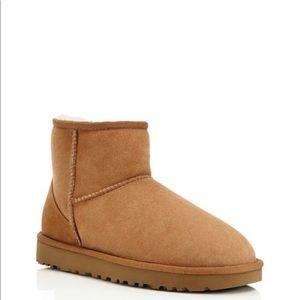 Womens UGG Classic Mini SheepSkin Boots